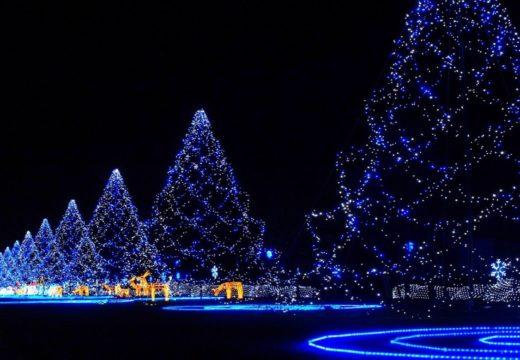 Merayakan Perayaan Natal Bersama di Beijing: kamu gak sendirian kok!